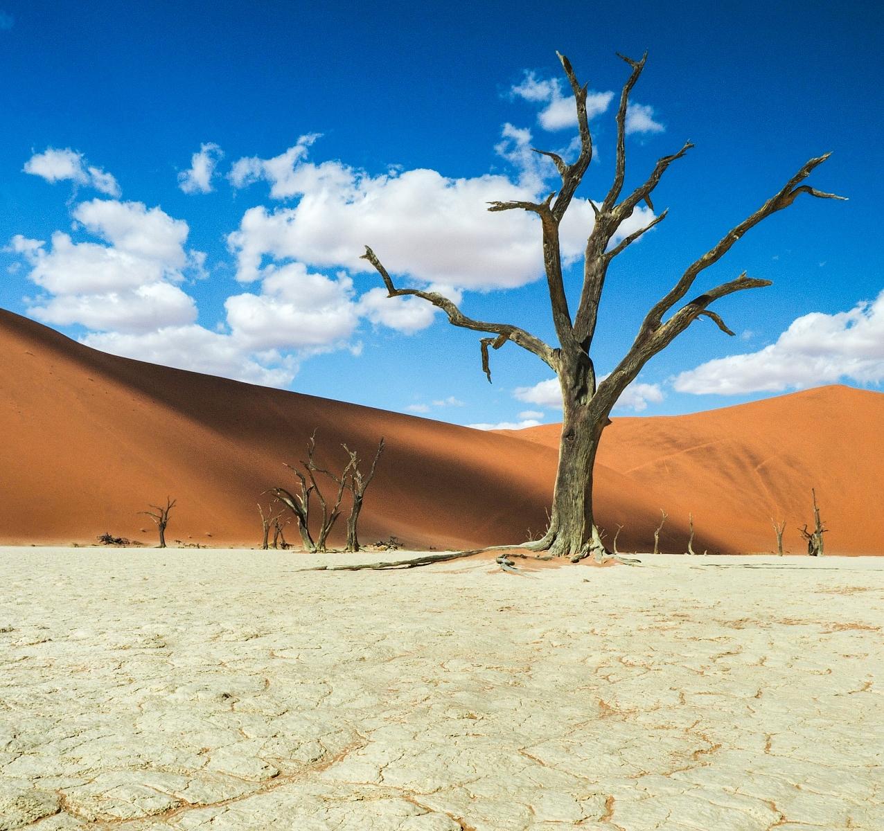 Deathvlei, Namibia